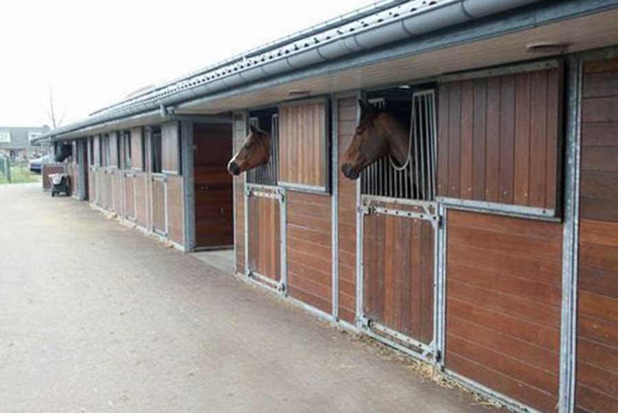 Pension-Meers-paarden-centrum-2