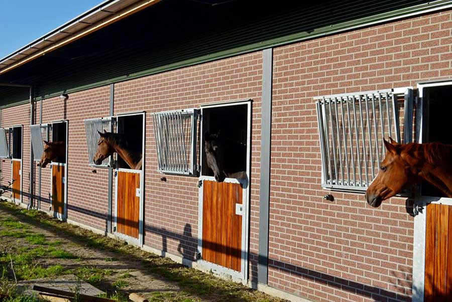 Pension-Meers-paarden-centrum