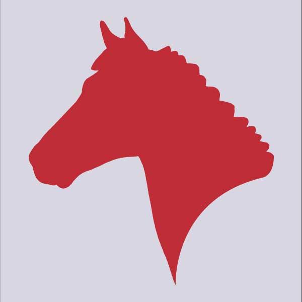 Meers paarden centrum