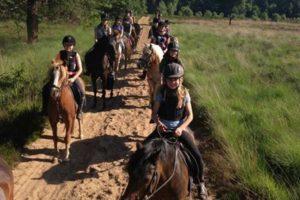 ruiterkamp-meers-paarden-centrum